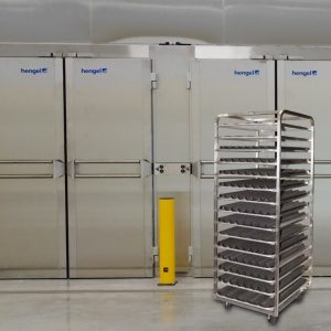 Ферментационные туннели для промышленных сред. Производитель HENGEL.